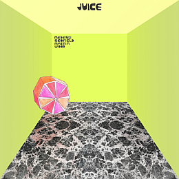 Medeski Scofield Martin and Wood - Juice