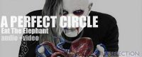 'Eat the Elephant' by A Perfect Circle took 14 years in the making. So, all you can expect is slowly unfolding grandeur.